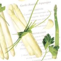 Tovaglioli in vetroresina 40x40 cm - Asparagus
