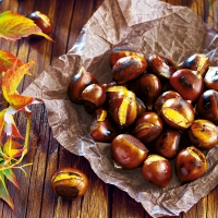 Serviettes 33x33 cm - Chestnuts