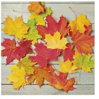 Napkins 33x33 cm - Leaves on Wood