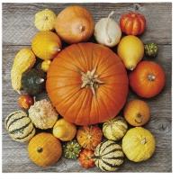 Servietten 33x33 cm - Pumpkin Composition