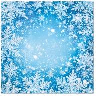 Serviettes 33x33 cm - Frosty Window