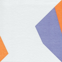 serwetki   Airlaid Dinner Napkins - Origami Schmetterling lila/grün/orange