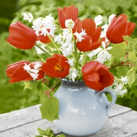 Serviettes 24x24 cm - Red tulips