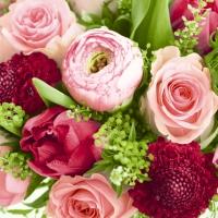 Servilletas 24x24 cm - A wealth of flowers