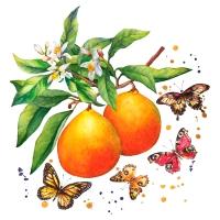 Servilletas 24x24 cm - Fruity Butterflies