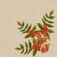 Napkins 33x33 cm - Rowan berry