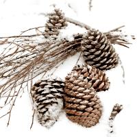 Napkins 33x33 cm - Cones in snow