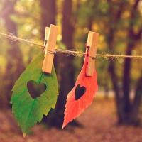 Servilletas 33x33 cm - Love Fall