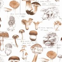 Napkins 33x33 cm - Mushrooms