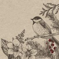 Serviettes 24x24 cm - Botanical Xmas
