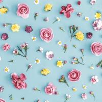 Napkins 33x33 cm - Spring Melody