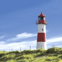 Serviettes 33x33 cm - Lighthouse