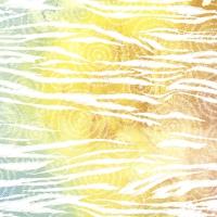 Napkins 24x24 cm - Colorful zebra