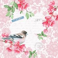 Serviettes 24x24 cm - Sweet bird