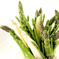 Serviettes 33x33 cm - Asparagus