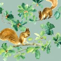 Napkins 33x33 cm - Squirrels
