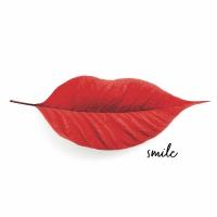 Napkins 33x33 cm - Smiling autumn