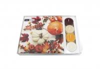 Combibox - Co-Pack Pumpkin & leaves