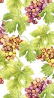 Napkins 33x40 cm - Grapes