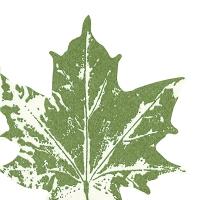 Serwetki wykrawane - Maple leaf green