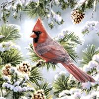 Serviettes 33x33 cm - Red cardinal