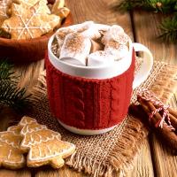 Serviettes 33x33 cm - Hot chocolate