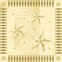 100 tovaglioli 33x33 cm - Star Shine
