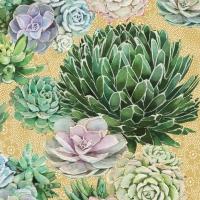 Servilletas 25x25 cm - Succulents Napkin 25x25