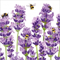 Serviettes 25x25 cm - Bees & Lavender Napkin 25x25