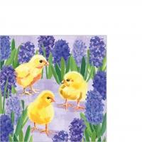Serviettes 25x25 cm - Chicks in Hyacinth Napkin 25x25