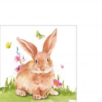 Napkins 25x25 cm - Mr. Rabbit Napkin 25x25