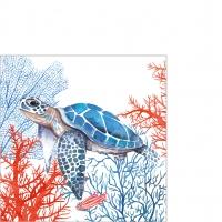 Servilletas 25x25 cm - The Turtle Napkin 25x25