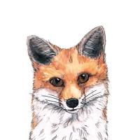 Napkins 25x25 cm - Fox Napkin 25x25