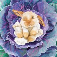 Napkins 33x33 cm - Babs the Bunny 33x33 cm