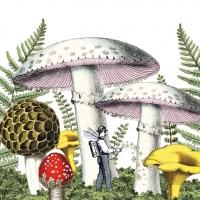 Servilletas 33x33 cm - Mushrooms Napkin 33x33