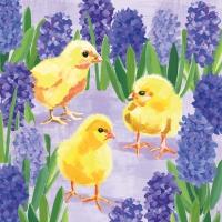 Napkins 33x33 cm - Chicks in Hyacinth Napkin 33x33