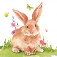 Napkins 33x33 cm - Mr. Rabbit Napkin 33x33