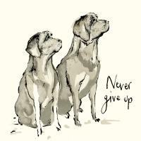 Napkins 33x33 cm - Never give up Napkin 33x33