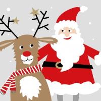 Napkins 33x33 cm - Santa & Deer 33x33 cm