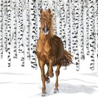 Serwetki 33x33 cm - Wilderness Horse Napkin 33x33