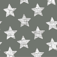 30 napkins 33x33 cm - Vintage Stars grau