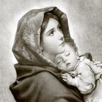 Serviettes 33x33 cm - Madonna