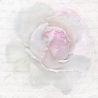 Serwetki 33x33 cm - Pink Rose Letter