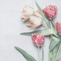Servilletas 33x33 cm - Tulipe