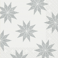 Napkins 33x33 cm - Manzana
