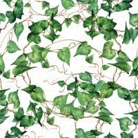Napkins 24x24 cm - Green Ivy Branches