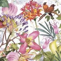 Napkins 33x33 cm - Exotic Garden