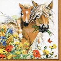 Serviettes 33x33 cm - Horses in Summer Meadow