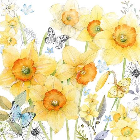 Servilletas 25x25 cm - Classic Daffodils