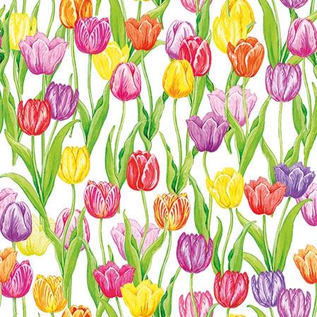 Napkins 25x25 cm - Magic Tulips